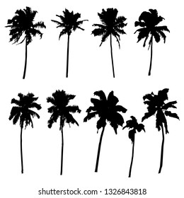 Vector set of silhouettes of palm trees of different shapes isolated on white background for your design.
