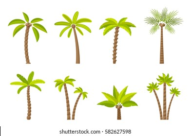 Vector set of simple palm trees. Flat cartoon palms on white background