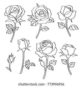 Vector set of simple roses. Vintage flowers