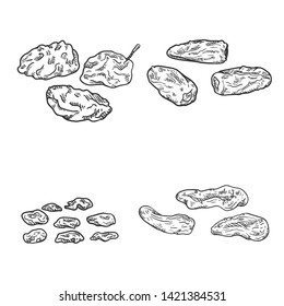 Vector Set of Sketch Dried Fruits. Prune, Date Fruit, Raisin and Dried Apricot.