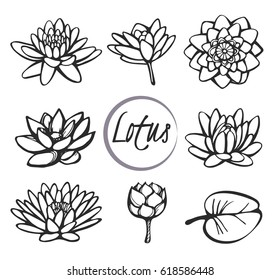 Vector set of sketch lotus icons on the white background
