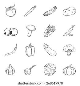 Vector Set of Sketch Vegetables Icons. Tomato, Carrot, Cucumber, Potato, Olives, Mushroom, Corn, Peas, Chili Peper, Paprika, Eggplant, Broccoli, Cauliflower, Garlic, Onion, Cabbage, Pumpkin.