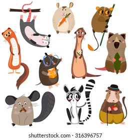 Vector set of small mammals in cartoon style.Opossum, groundhog,hamster, lemur,mole,gopher , chinchilla, ferret and other. Bright children cartoon collection. - stock vector