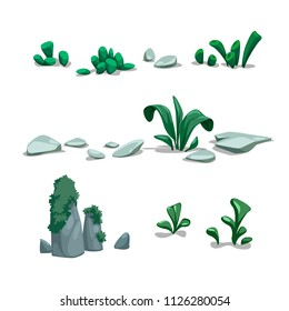 vector set of stones plants nature algae seabed sea