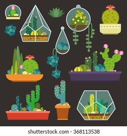 Vector set with succulents flowers and glass terrariums. Trendy interior elements