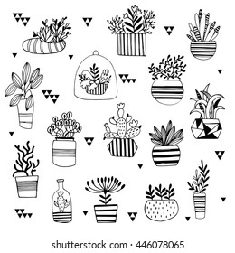 Vector set with succulents flowers. Vector illustration.