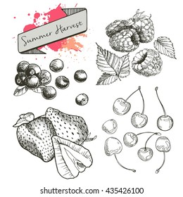 Vector set of summer harvest berries. Hand drawn vintage engraved art. Cherry, blueberry, strawberry, raspberry. Isolated on white background.