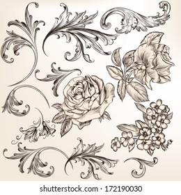 Vector set of swirl and floral elements for design. Calligraphic vector