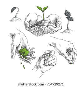 Vector set of symbols of agriculture. Illustration of hands with seeds and sprout. Growth of plants on early stages
