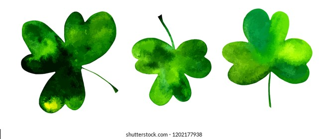 A vector set of three shamrocks, Irish clovers, hand drawn in watercolor and isolated on a white background