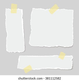Vector set of torn papers attached sticky tape.