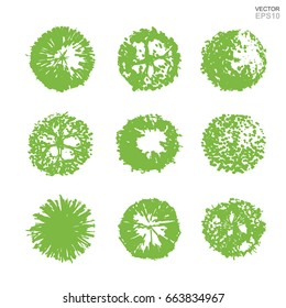 Vector set of tree plan for landscape design. Abstract natural symbol isolated on white background.