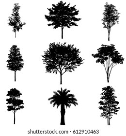 Vector set of tree silhouettes, isolated on white background.