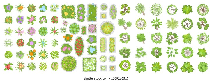 Vector set. Trees, flowers and flower beds. Top view. Different plants and trees vector set for architectural or landscape design. (View from above) Nature green spaces.