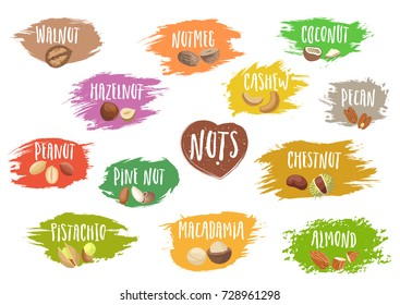 Vector set of trendy emblems of various nuts and white lettering on colorful blots. For packaging and advertising healthy food.