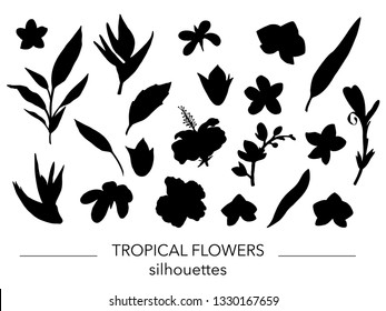 Vector set of tropical leaves and flowers silhouettes. Stencil of jungle foliage. Hand drawn palm tree, banana, monstera, dieffenbachia, fern, alocasia, plumeria,orchid, strelitzia, hibiscus
