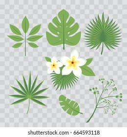 Vector set of tropical leaves. Palm leaf, banana leaf, hibiscus, plumeria flowers. Jungle trees.Botanical floral illustration. Set of vector trendy illustrations isolated on transparent checkered