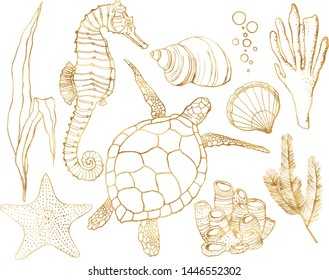 Vector set with underwater animals and coral reef plants. Hand painted golden turtle, seahorse, laminaria, coral and shell isolated on white background. Line art illustration for design, print.
