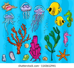 Vector set of underwater inhabitants with a starfish, fish, seashells, sea horses, seaweed, jellyfish and corals. Contours with multi-colored filling. Cartoon style