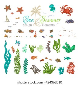 Vector set of underwater sea life design elements. Cartoon illustration. Various shells, algae, fish, jellyfish, starfish, bottle with a letter, key, stones and bubbles isolated on white background.