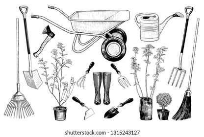 Vector set of various garden tools and plants.Vintage ink drawing. Isolated objects on white background. Clipart.