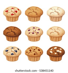 Vector set of various muffins with blueberry, almond, chocolate isolated on a white background.