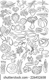 vector set of vegetables in line art mode