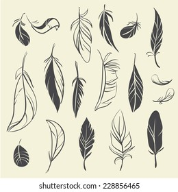 Vector set of vintage hand drawn feathers