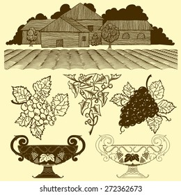 Vector Set: Vintage Wine Label Elements, Orchard, Grapes, Vines and Cups