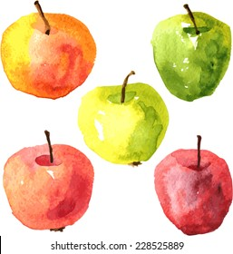 Vector set of  watercolor drawing apples,food design elements, fresh fruits, hand drawn  illustration
