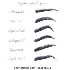 Vector set of watercolor eyebrows. Watercolor realistic illustration. Female isolated eyebrows in different shapes.