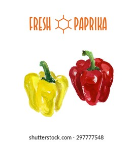 Vector set of watercolor paprika elements on white background. Cute illustration is good for magazine or book, poster and card design, menu cover.