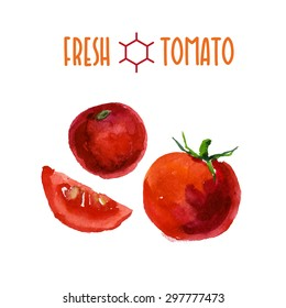 Vector set of watercolor tomato elements on white background. Cute illustration is good for magazine or book, poster and card design, menu cover.