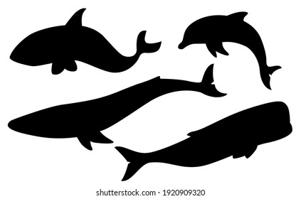 Vector set of whales and dolphin silhouettes.