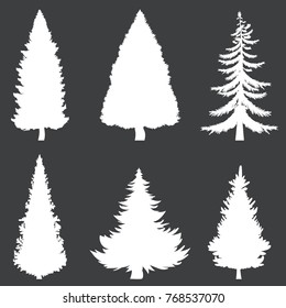 Vector Set of White Silhouettes of Pine Trees on Black Background