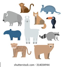Vector set Wild animals. Lama, raccoon, tapir, armadillo, grizzly bear, coyote, buffalo, cockatoos and jaguar. North and South America. Flat style character.