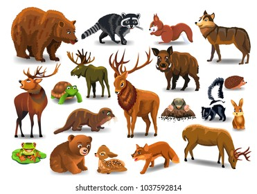 Vector set of wild forest animals isolated on a white background