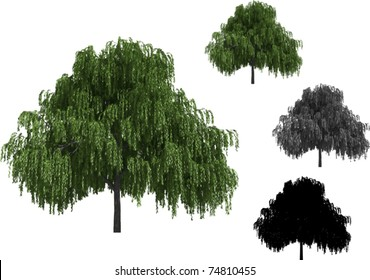 Vector set of Willow Trees