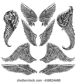Vector set of wings. Isolated vector illustration. The illustration is fully editable and can be used for heraldic, mascot or tattoo design and decoration.