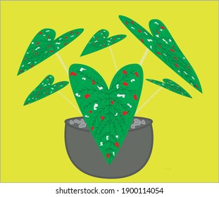 The vector with the shape of a taro plant (caladium leaves) in green with red and white speckled leaves gives an exotic impression like being in the jungle