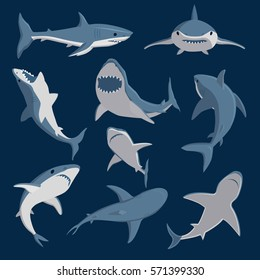 Vector shark comic style character wild fish set.