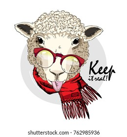 Vector sheep with glasses and scarf. Hand drawn illustration of dressed sheep. Keep it real.