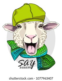 Vector sheep with green cap and knitted scarf. Hand drawn illustration of dressed sheep.