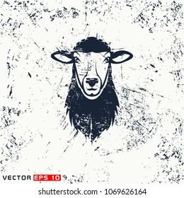 Vector sheep head on grunge background