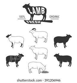 vector sheep icon set, sheep silhouette, isolated sheep, lamb sign, farm logo templates, butcher shop label,cuts of lamb, butcher cuts scheme and design elements