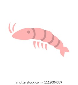 vector shrimp illustration - food sea restaurant, food nutrition