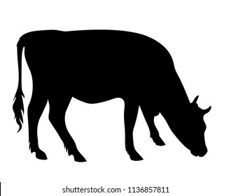 Vector side viea grazing cow silhouette