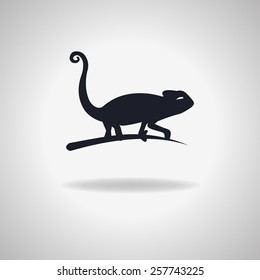 vector sign - silhouette of a chameleon