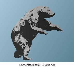 Vector silhouette bear isolated