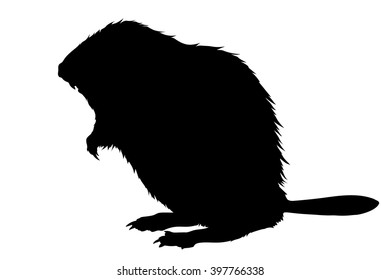 beaver silhouette images stock photos vectors shutterstock rh shutterstock com Animal Tracks Clip Art Animal Tracks Clip Art Black and White